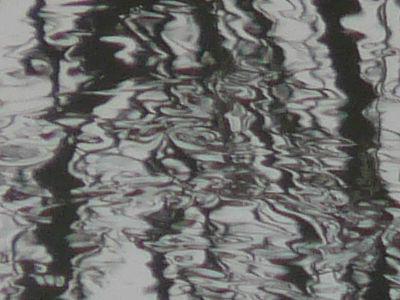 nad rzeką - ogniskowa 504mm - skala 1:1
